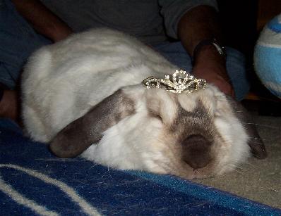 Princess Twinky